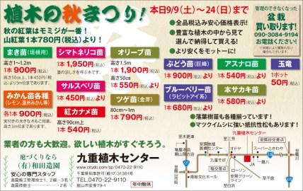 425_wadazoen