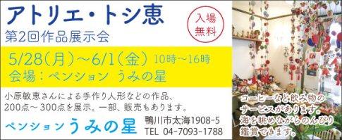 441umi_hoshi