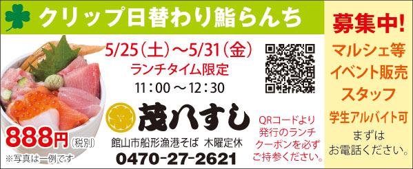 464mohachi_sushi