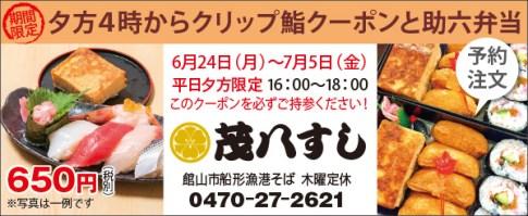 466mohachi_sushi