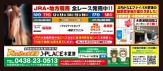 507f_keiba_kisarazu