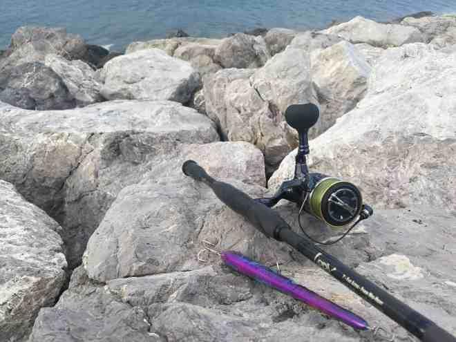 needle NARAK 230-F - CANNA LABRAX SEASPIN - MULINELLO SHIMANO TWINPOWER 5000 XD