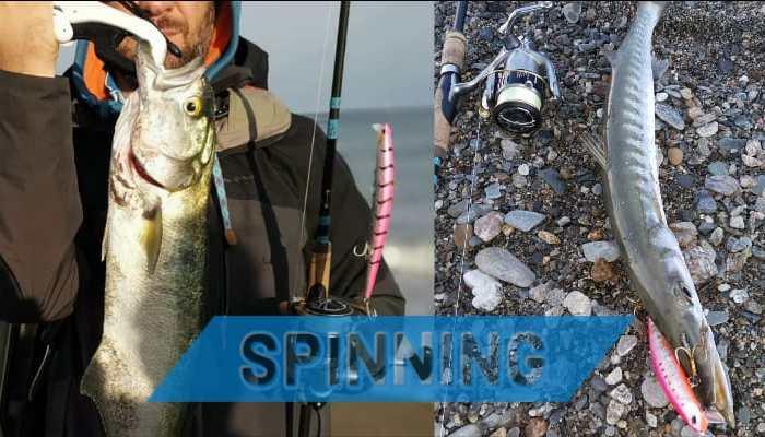 spinning al barracuda e serra