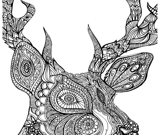 Free Coloring Pages For Adults Animals Download Free Clip Art