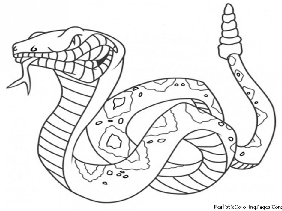 Free Desert Coloring Pages Download Free Clip Art Free Clip Art On Clipart Library