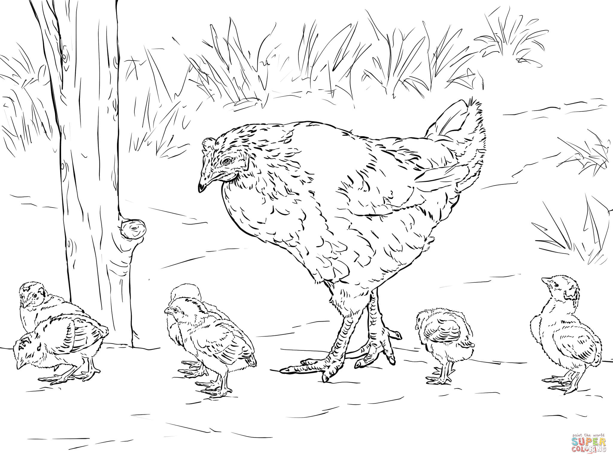 Free Hen And Chicks Coloring Page Download Free Clip Art