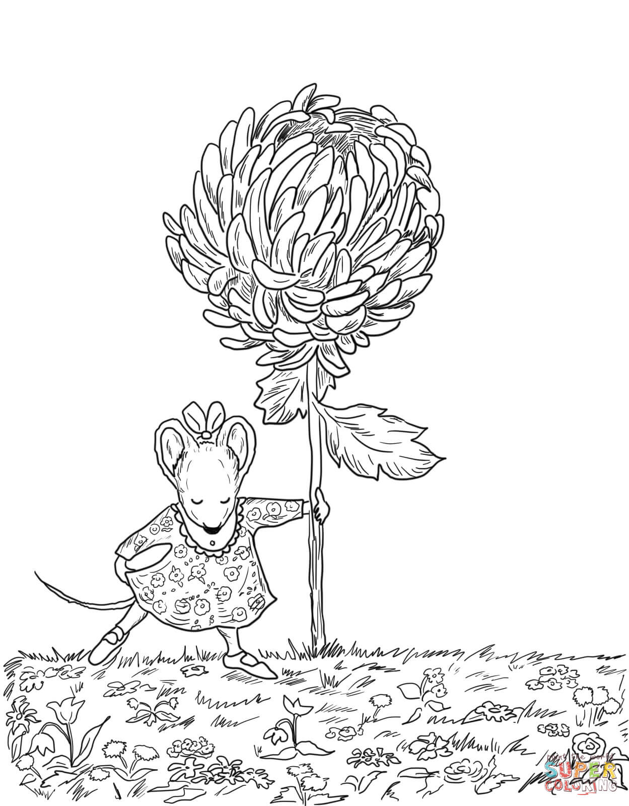 Chrysanthemum Story Map Worksheet