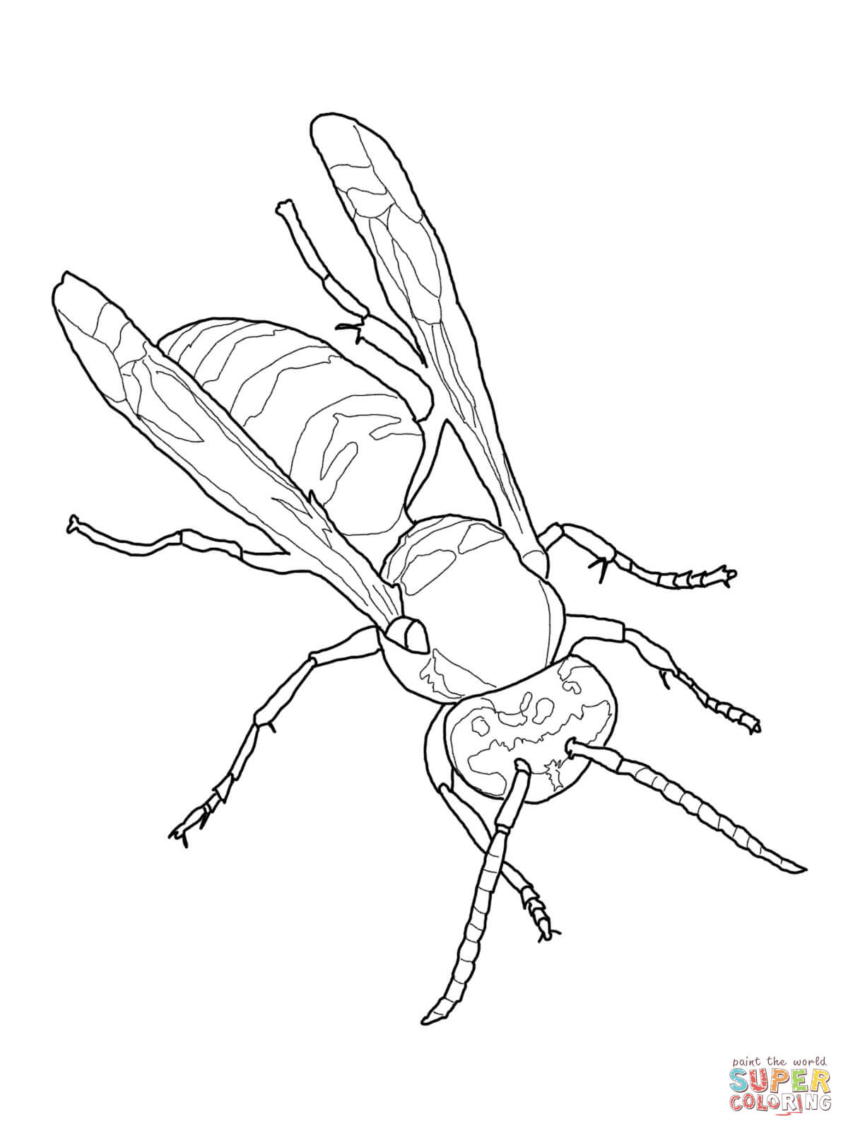 Free Yellow Jacket Coloring Page Download Free Clip Art