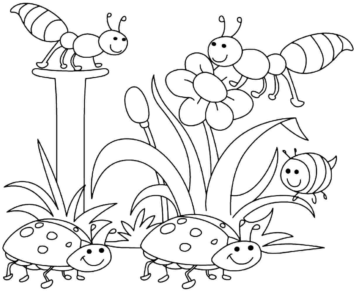 Free Printable Spring Coloring Pages Kindergarten