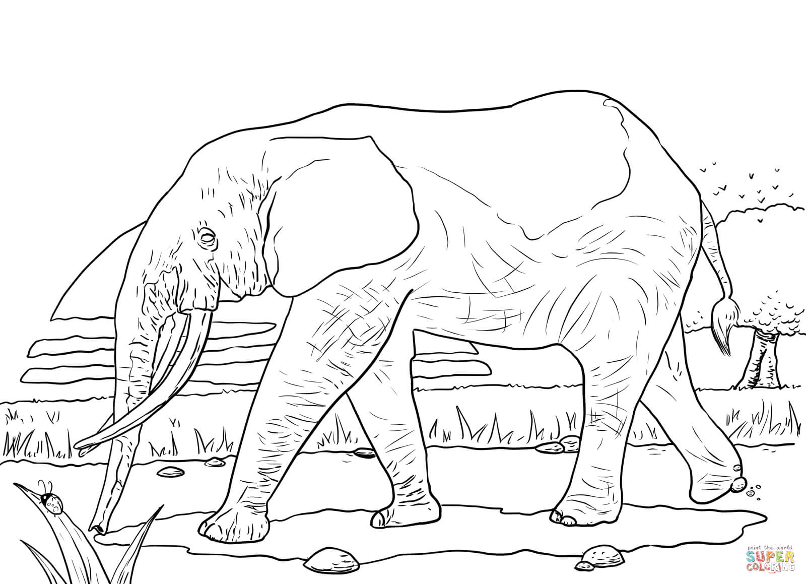 African Savanna Coloring Pages Preschool