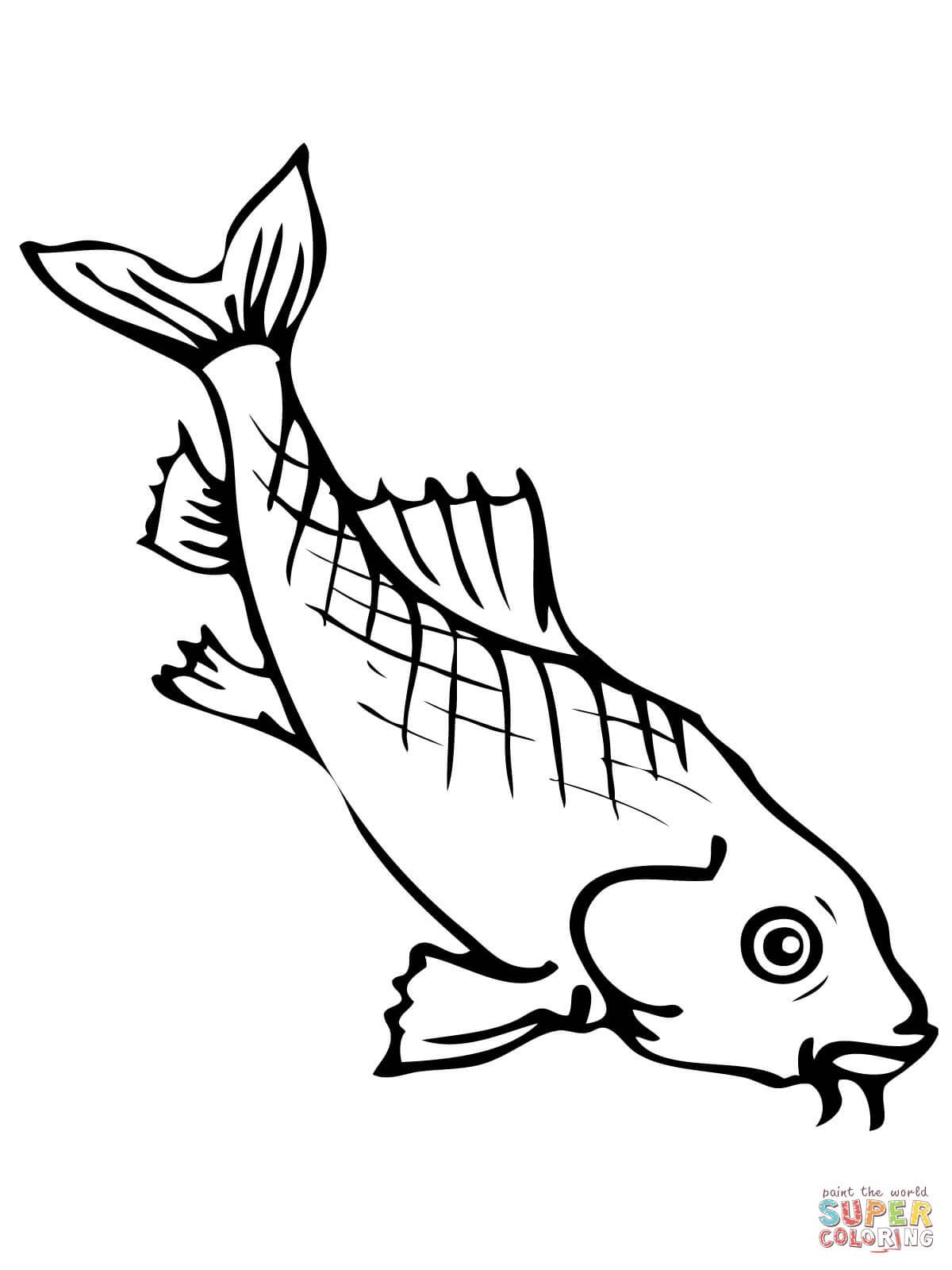Coloring Page Koi Carp Fish