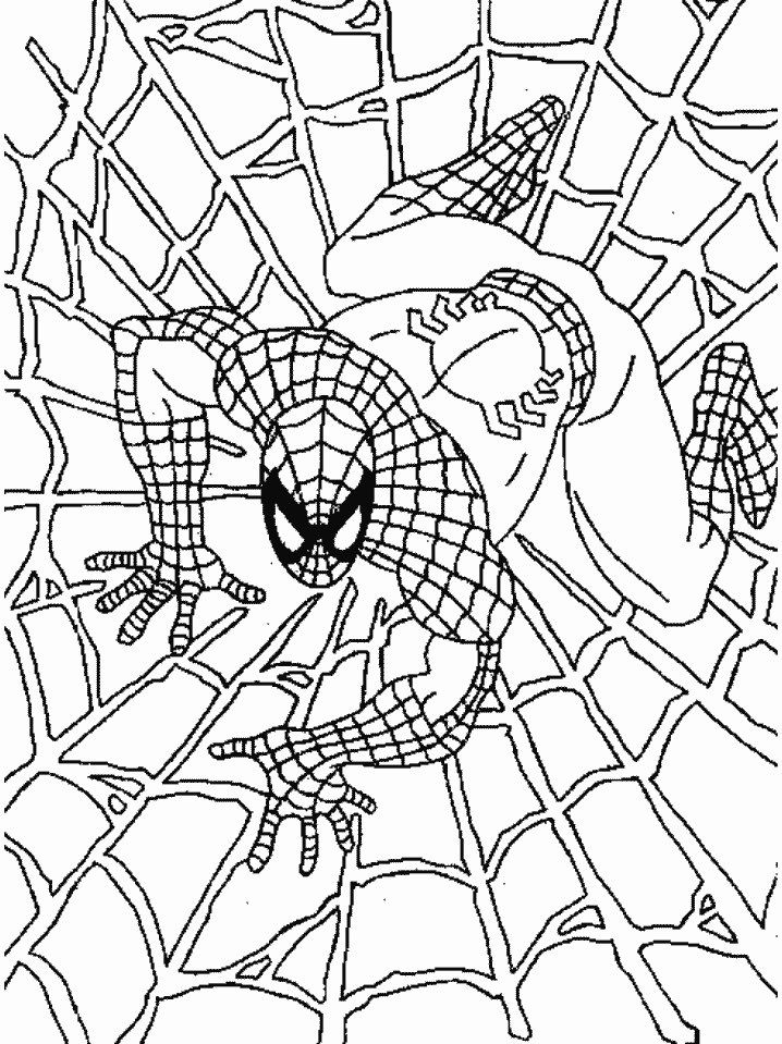 Free Black Spiderman Coloring Pages Download Free Clip Art Free Clip Art On Clipart Library