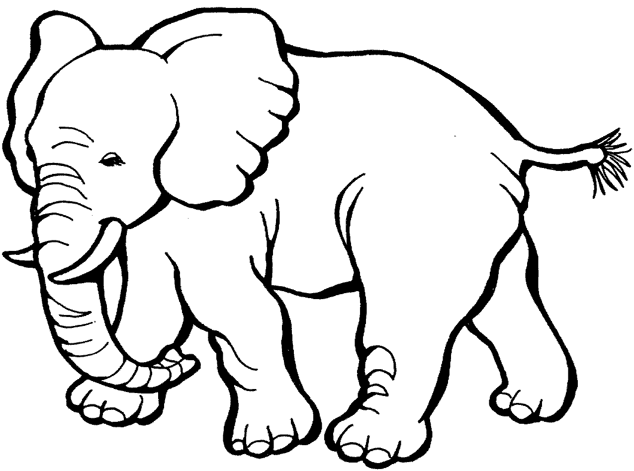 Free Elephant Cliparts Download Free Clip Art Free Clip Art On Clipart Library
