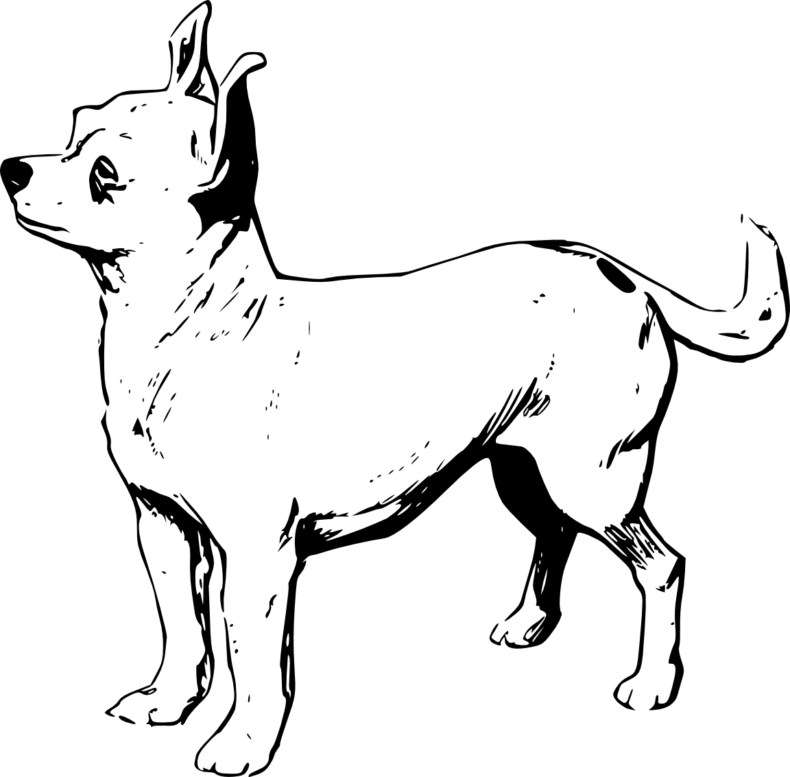 Free Chihuahua Cliparts Download Free Clip Art Free Clip