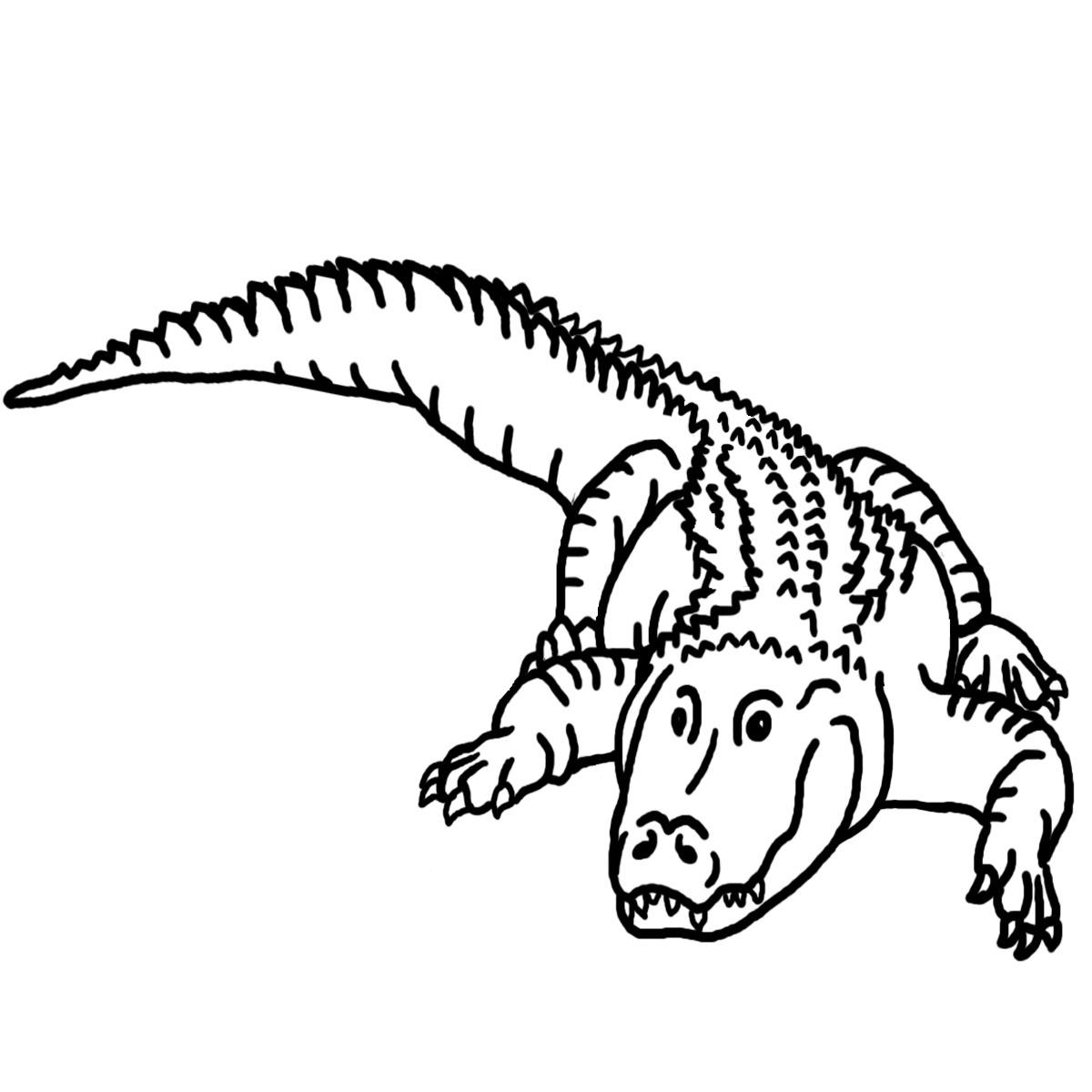 Free Reptile Cliparts Download Free Clip Art Free Clip