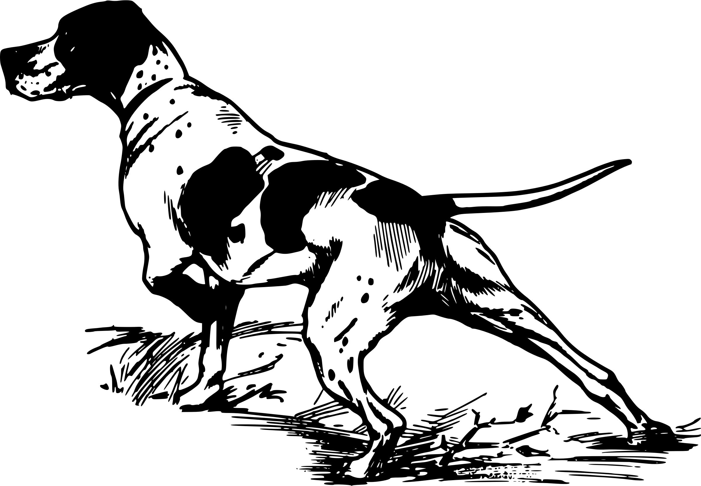 Hunting Dog Silhouette Vector Clipart Free
