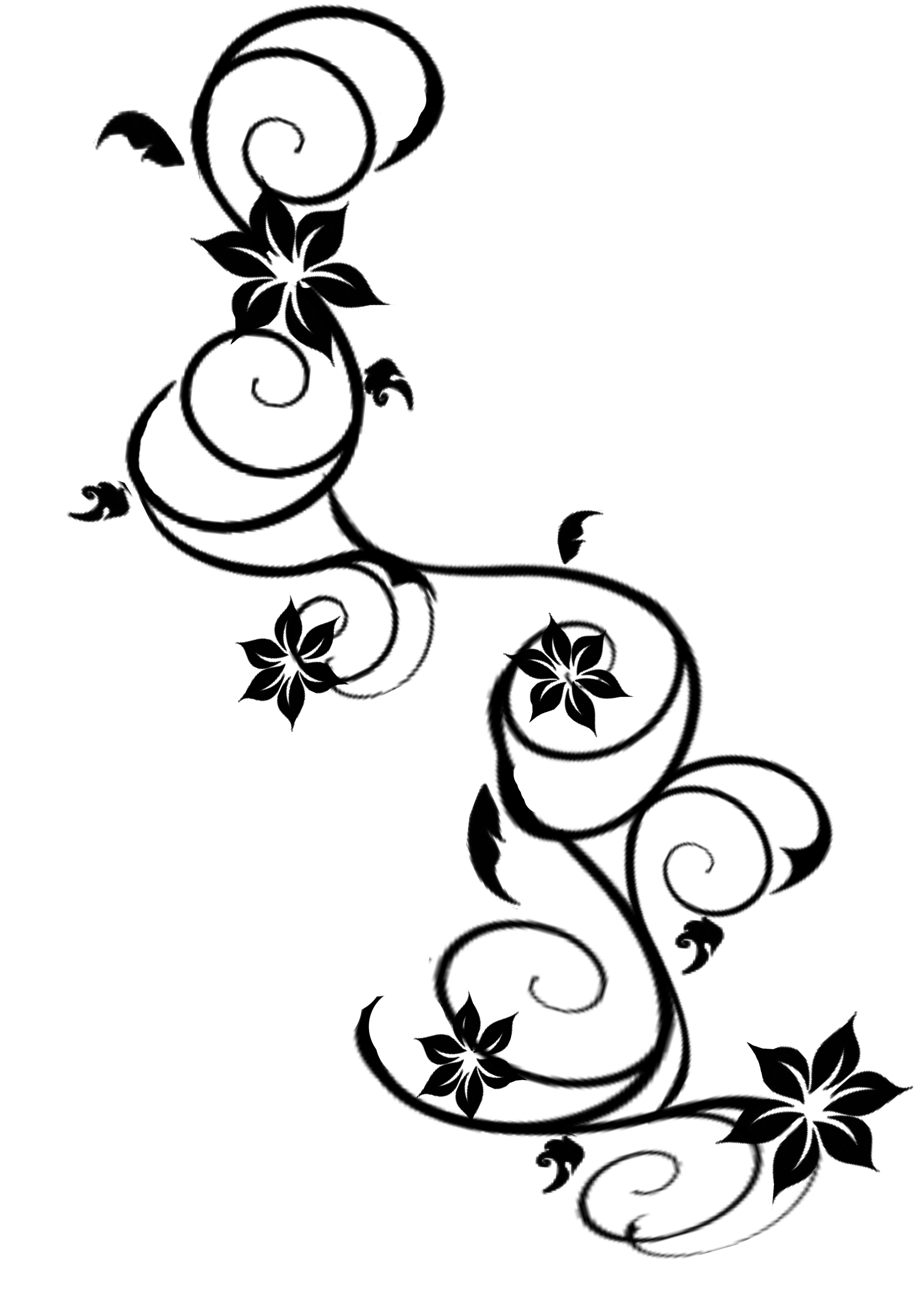 Free Vines Download Free Clip Art Free Clip Art On