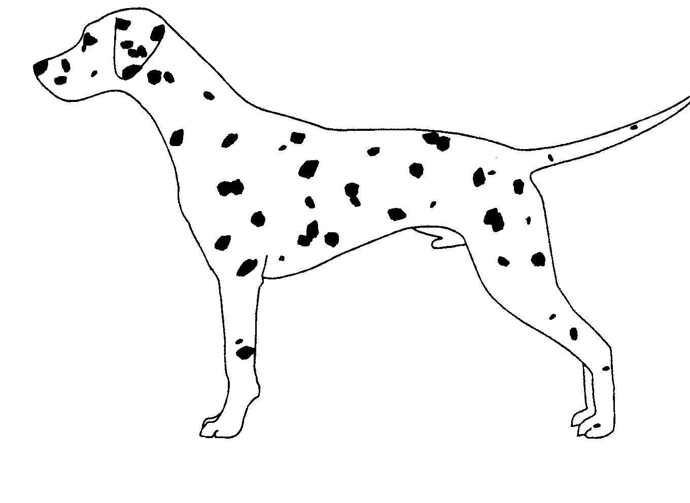 Free Dogs Outline Download Free Clip Art Free Clip Art