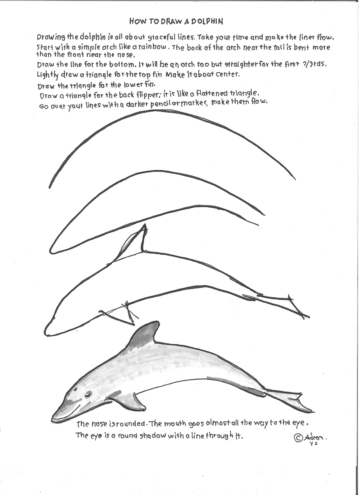 Free How To Draw A Dolphin Download Free Clip Art Free Clip Art On Clipart Library