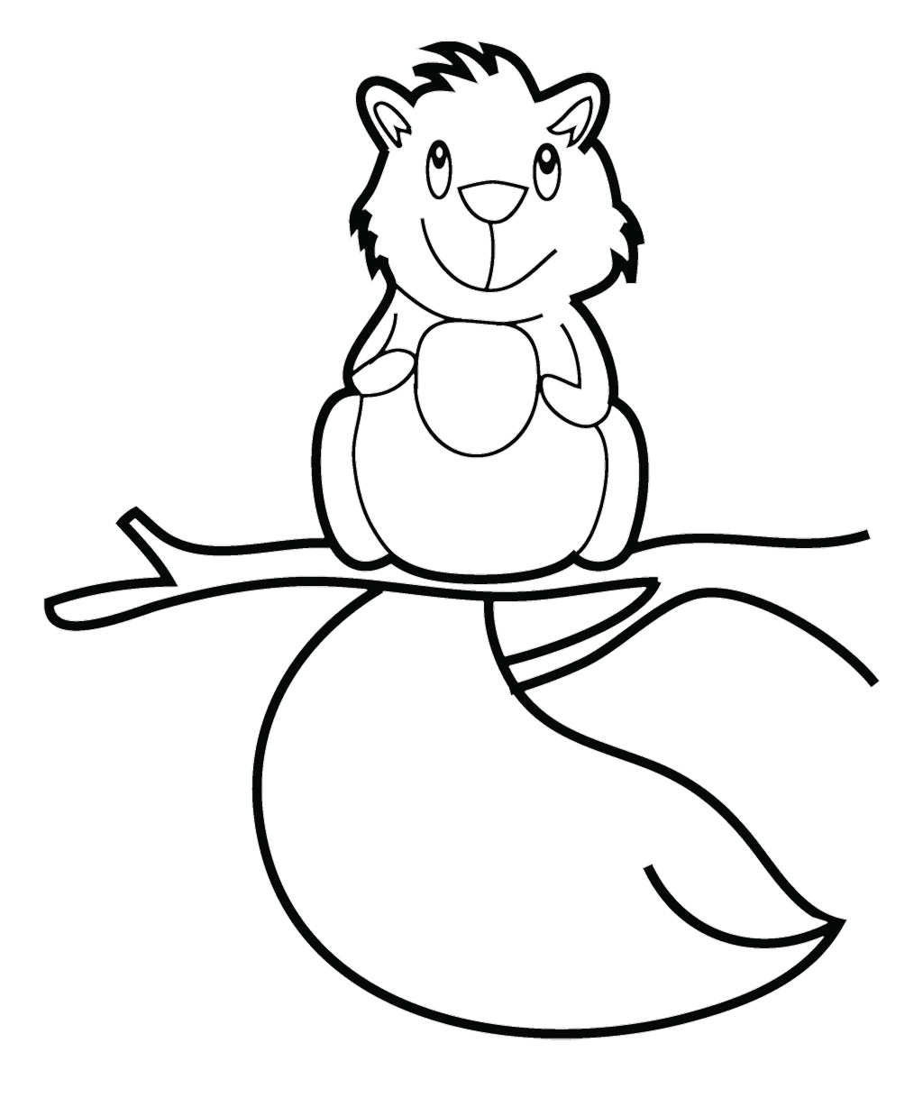 Squirrel Coloring Page Animal Coloring Pages Printable