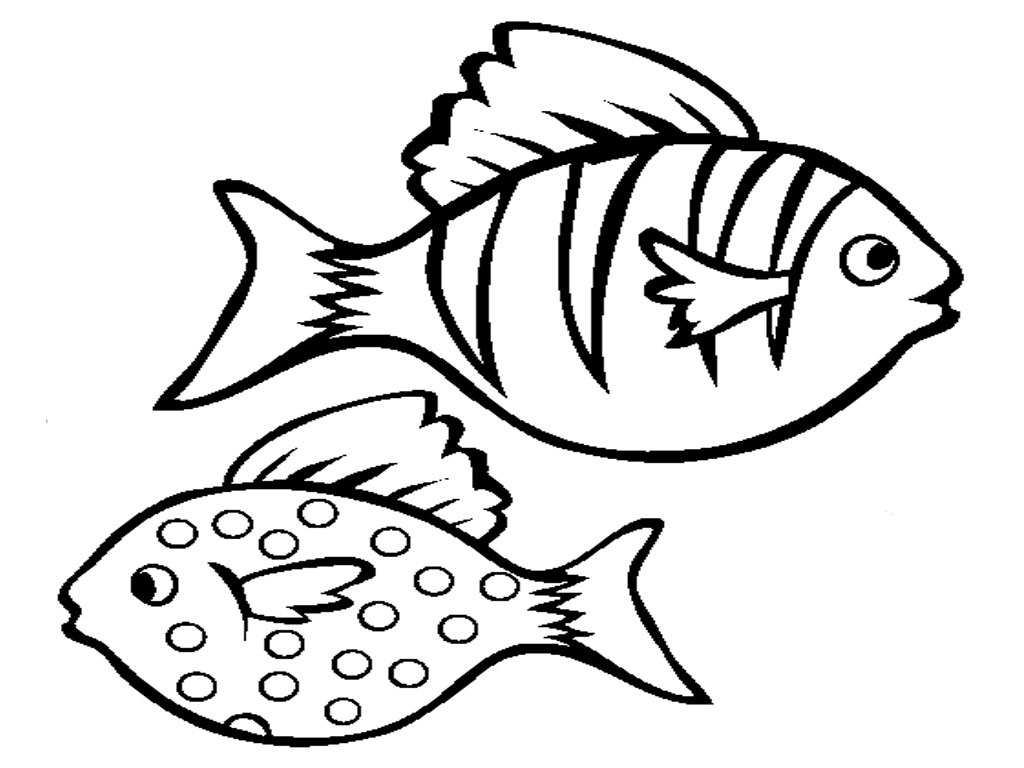 Free Cute Fish Outline Download Free Clip Art Free Clip