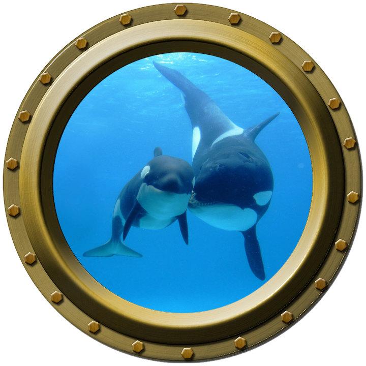 Free Scuba Diving Art Download Free Clip Art Free Clip