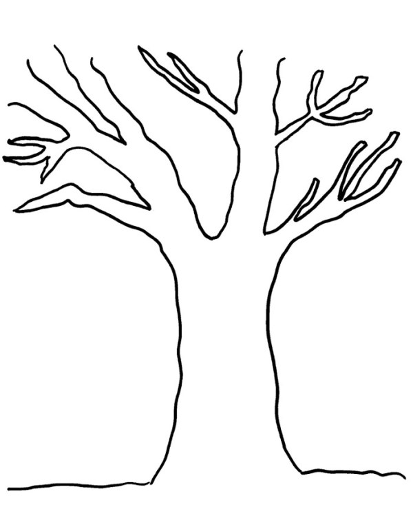 bare tree coloring page # 5