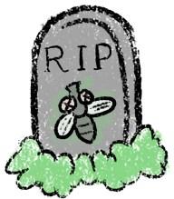 Afbeeldingsresultaat voor sad fly cartoon