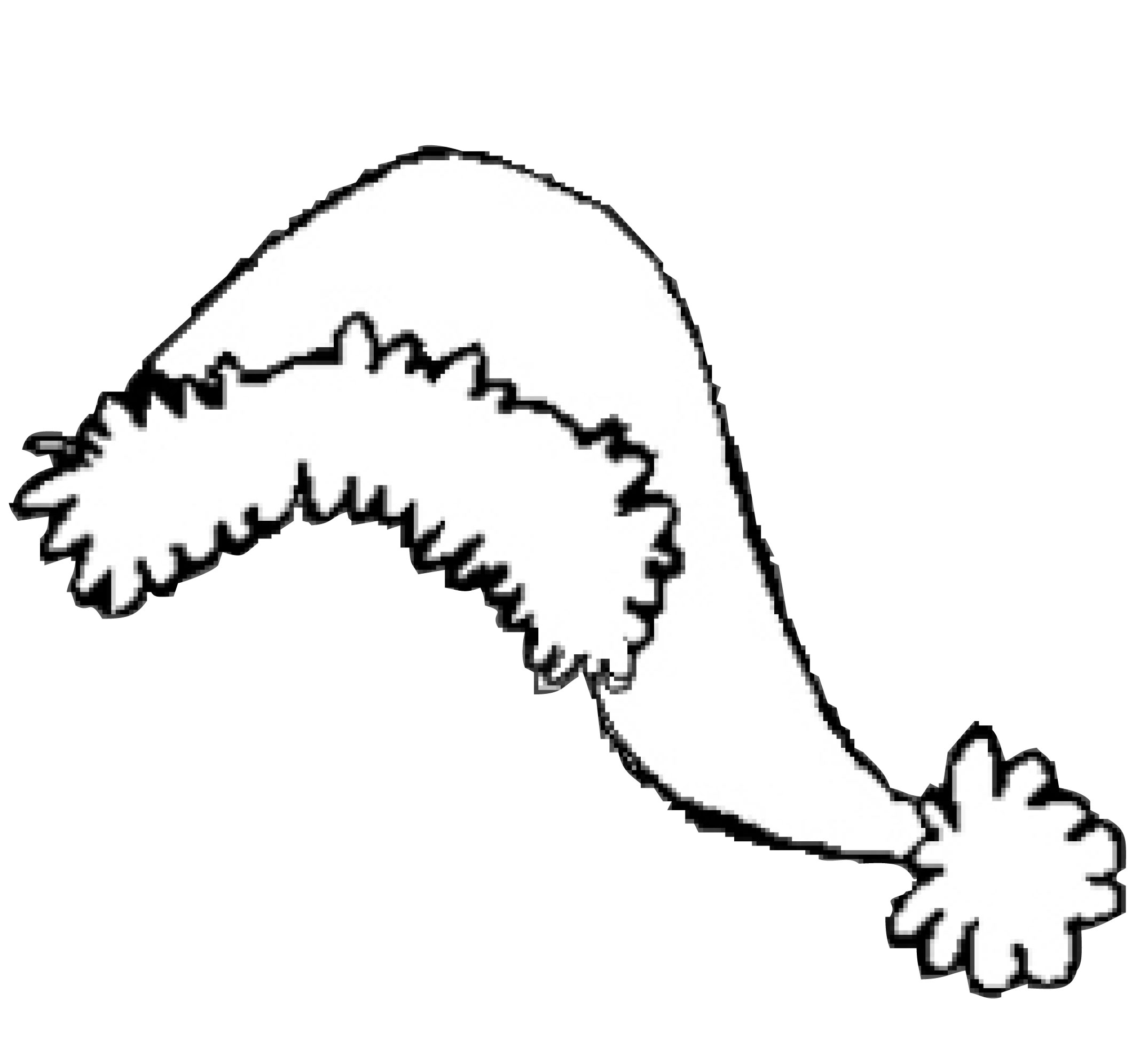 Free Shamu Coloring Pages Download Free Clip Art Free