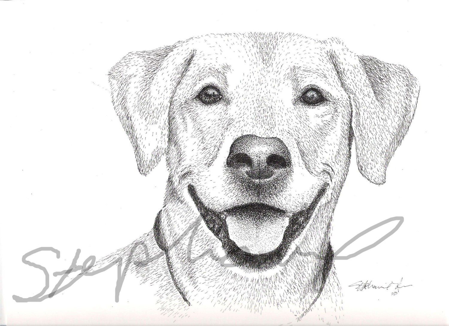 Free Dogs Drawings Download Free Clip Art Free Clip Art