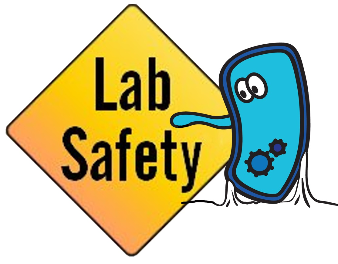 Free Science Safety Download Free Clip Art Free Clip Art On Clipart Library