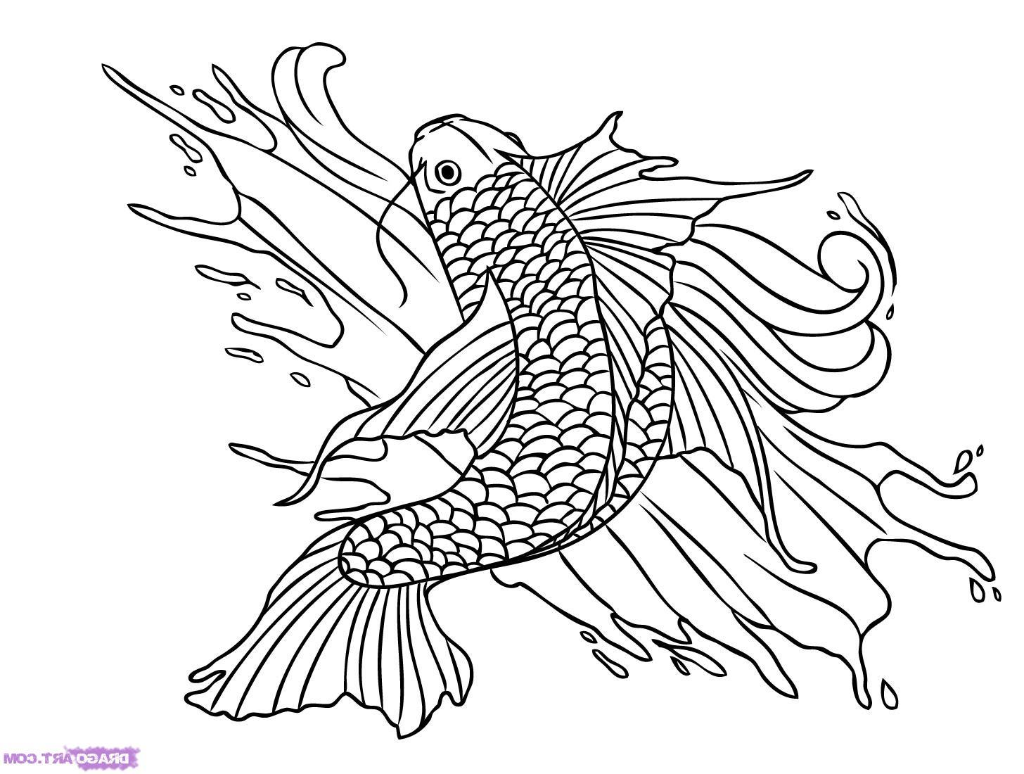 Free Fish Images Drawings Download Free Clip Art Free