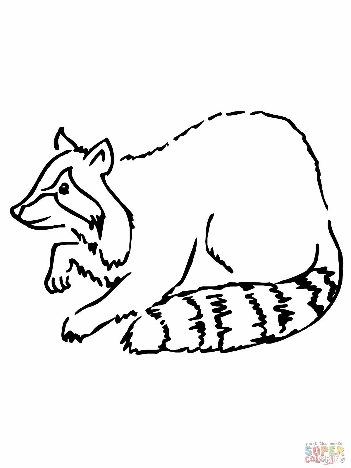 Free Raccoon Pictures For Kids Download Free Clip Art