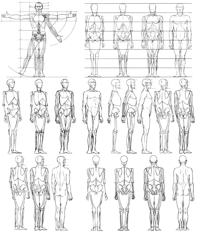 Learn To Draw Human Body