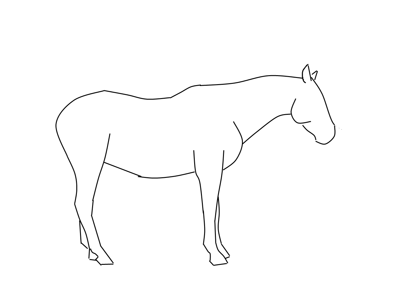 Mustang Horse Coloring Pages Coloring Pages Pictures Imagixs