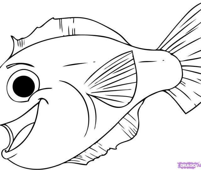 How To Draw A Cartoon Fish Step By Step Cartoon Animals Animals