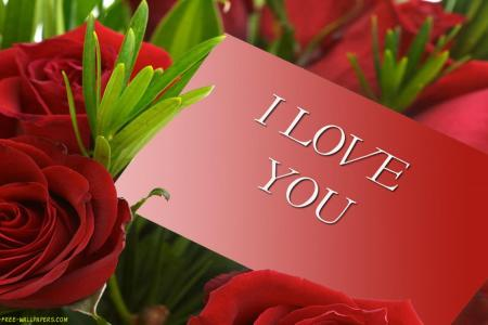 Free Red Roses  Download Free Clip Art  Free Clip Art on Clipart Library Red Roses HD Wallpaper   Flowers Wallpapers