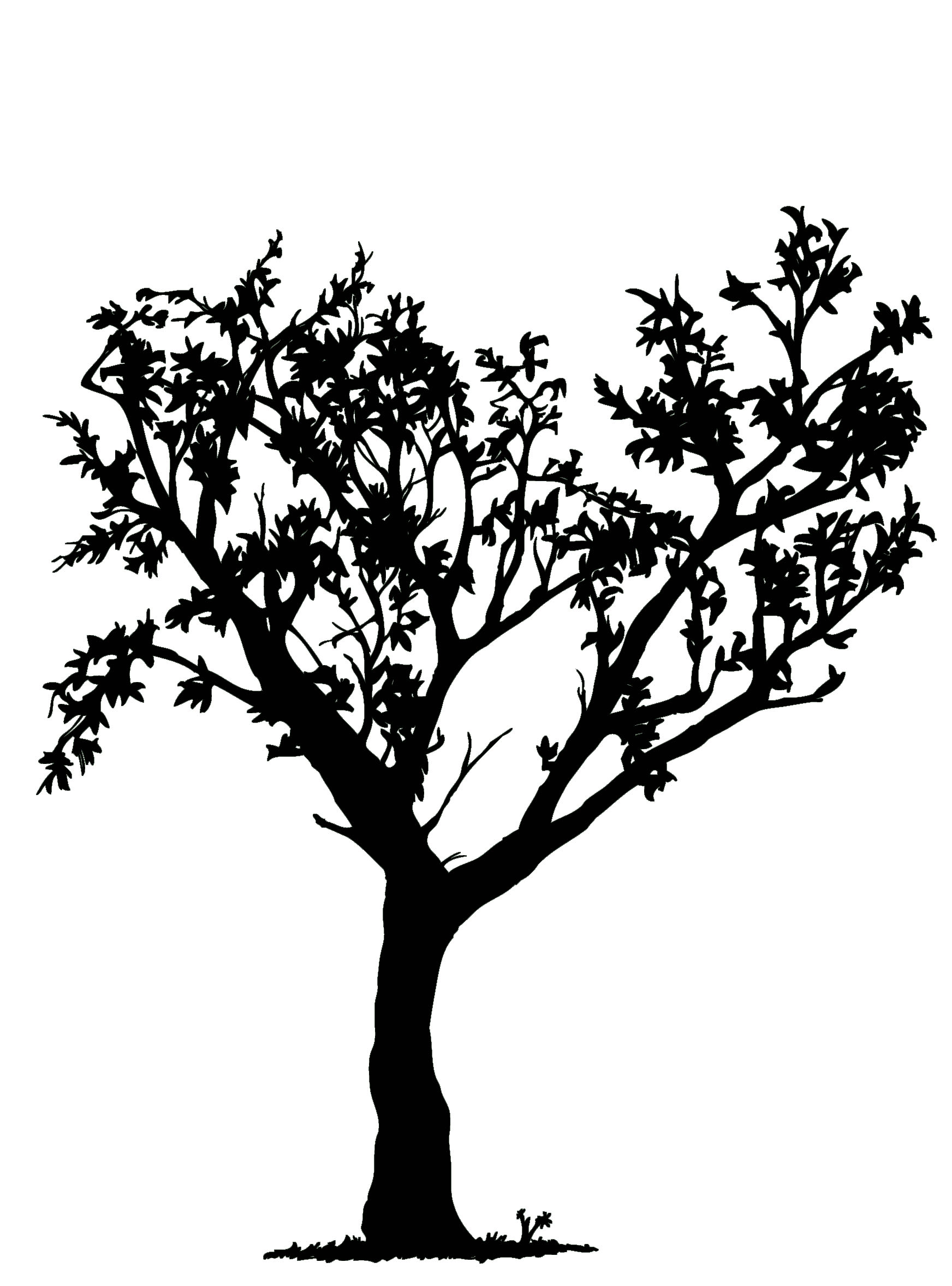 Simple Black And White Tree Clipart Library