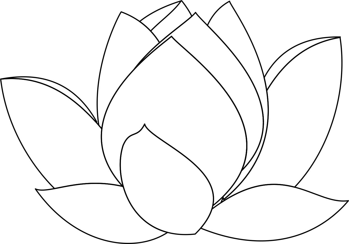Free Lotus Flower Line Drawing Download Free Clip Art