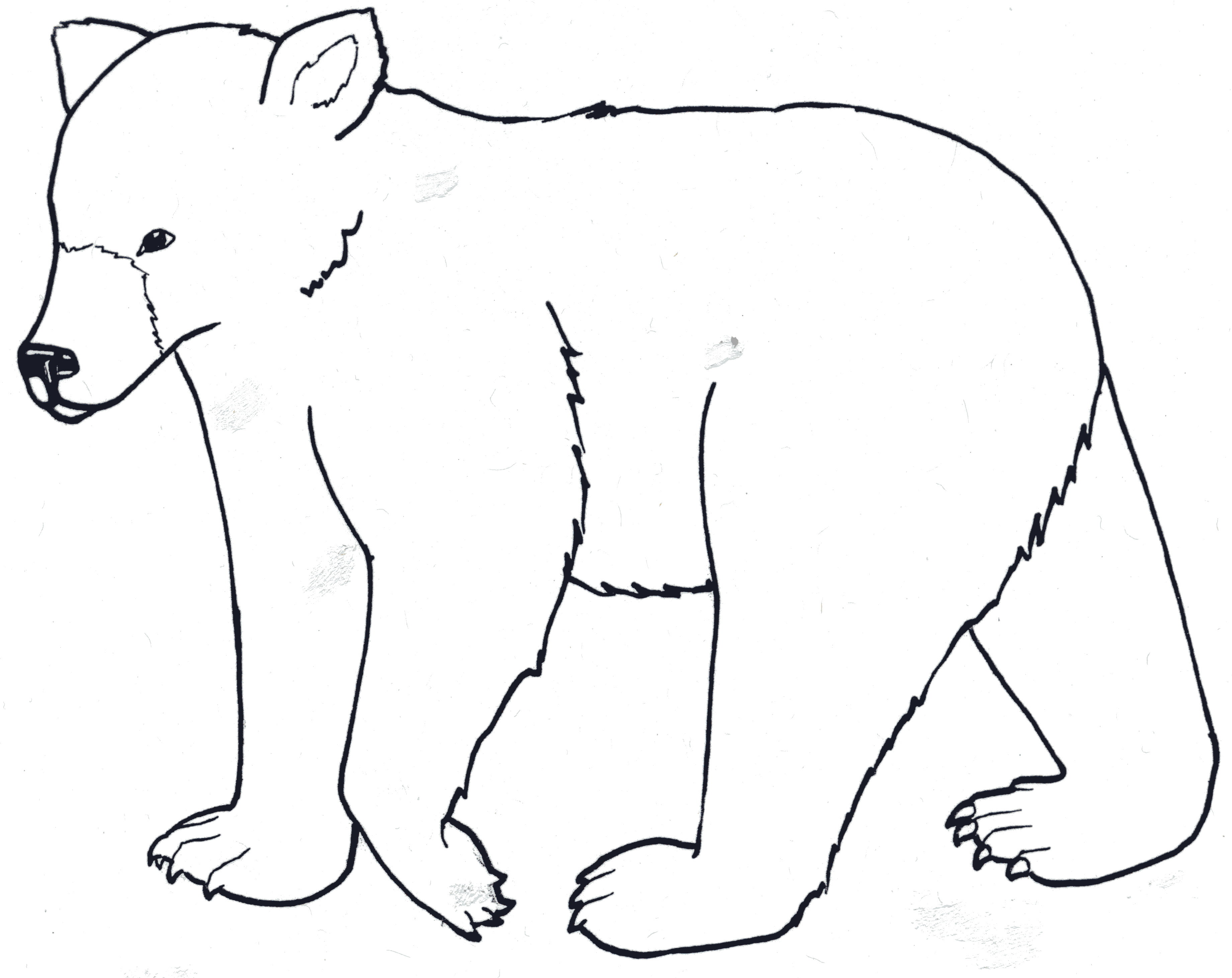 Free Outline Of Bear Download Free Clip Art Free Clip Art On Clipart Library