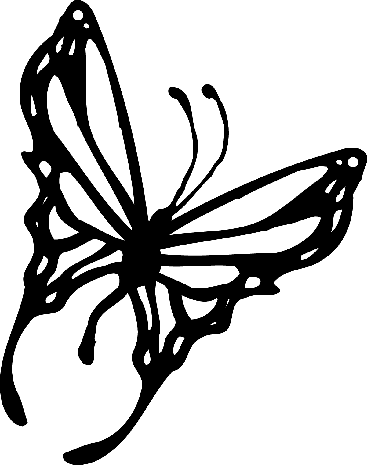 Free Butterfly Outline Clipart Download Free Clip Art