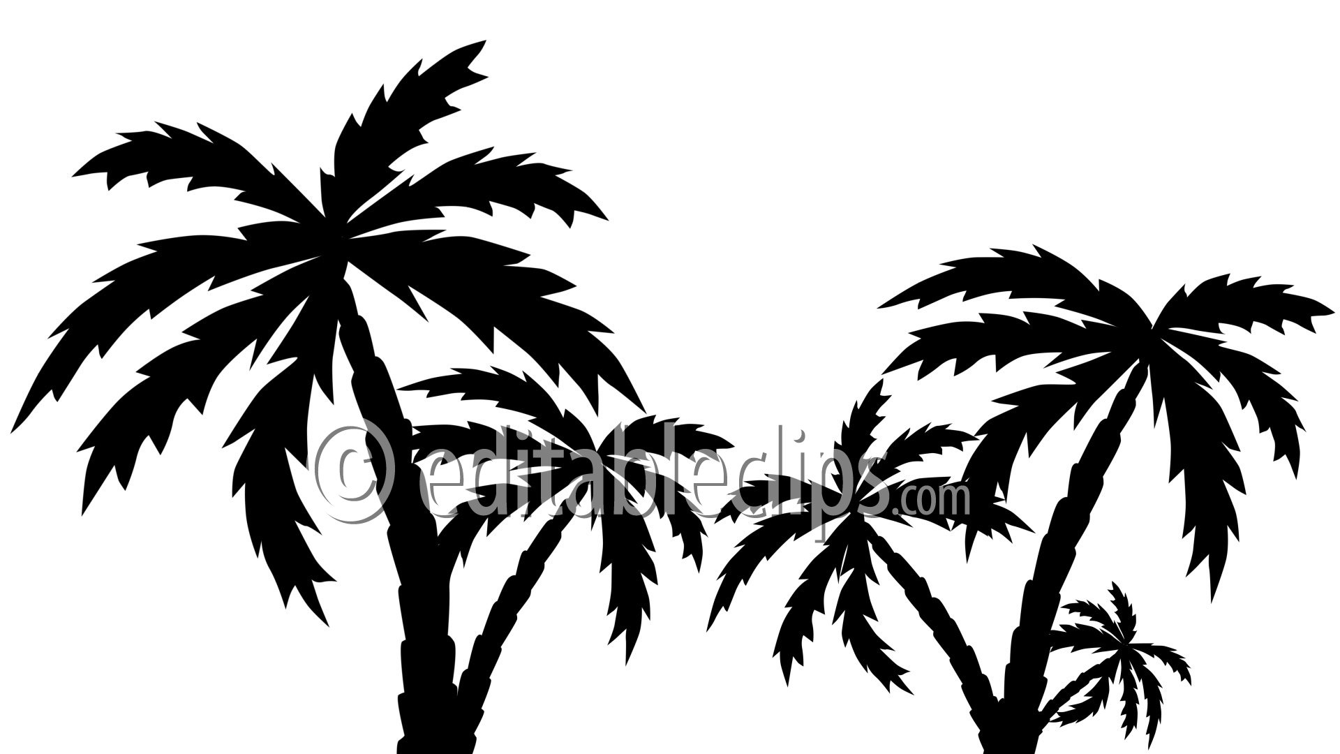 Fat A Palm Tree