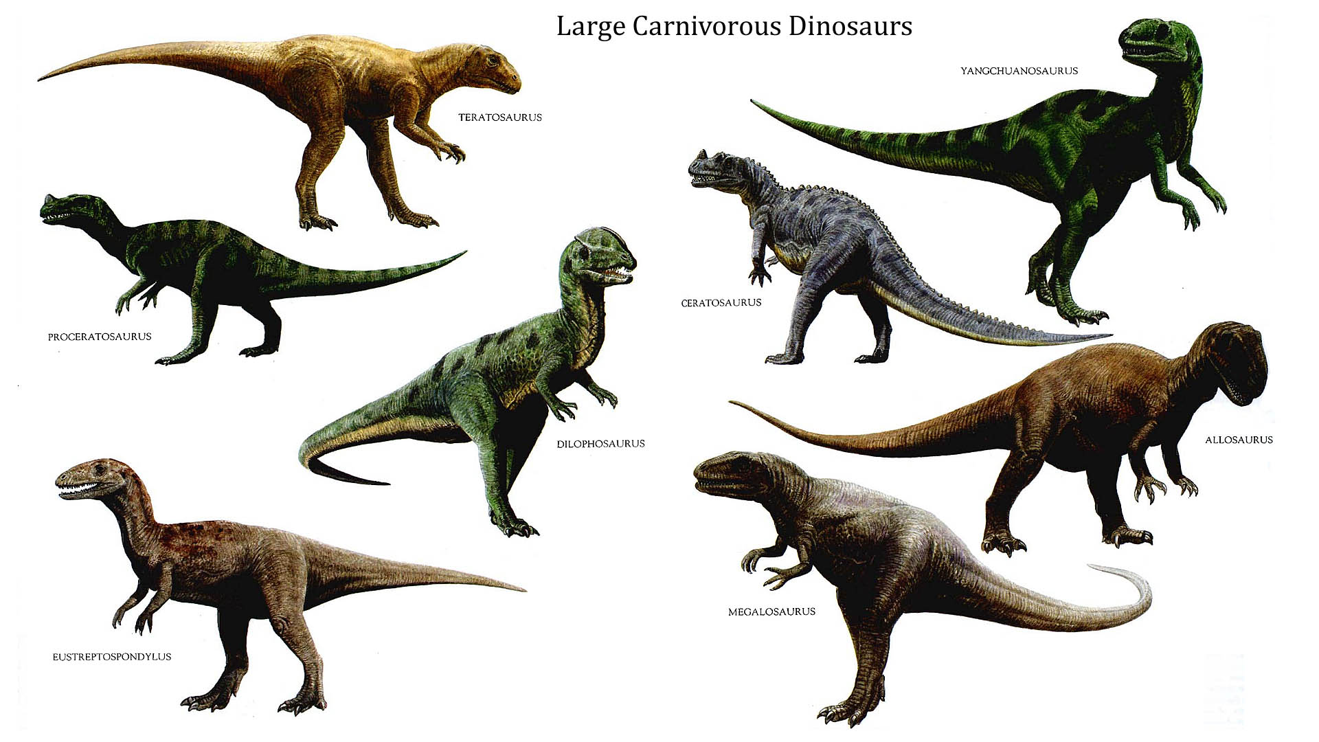 Free Dinosaurs Download Free Clip Art Free Clip Art On