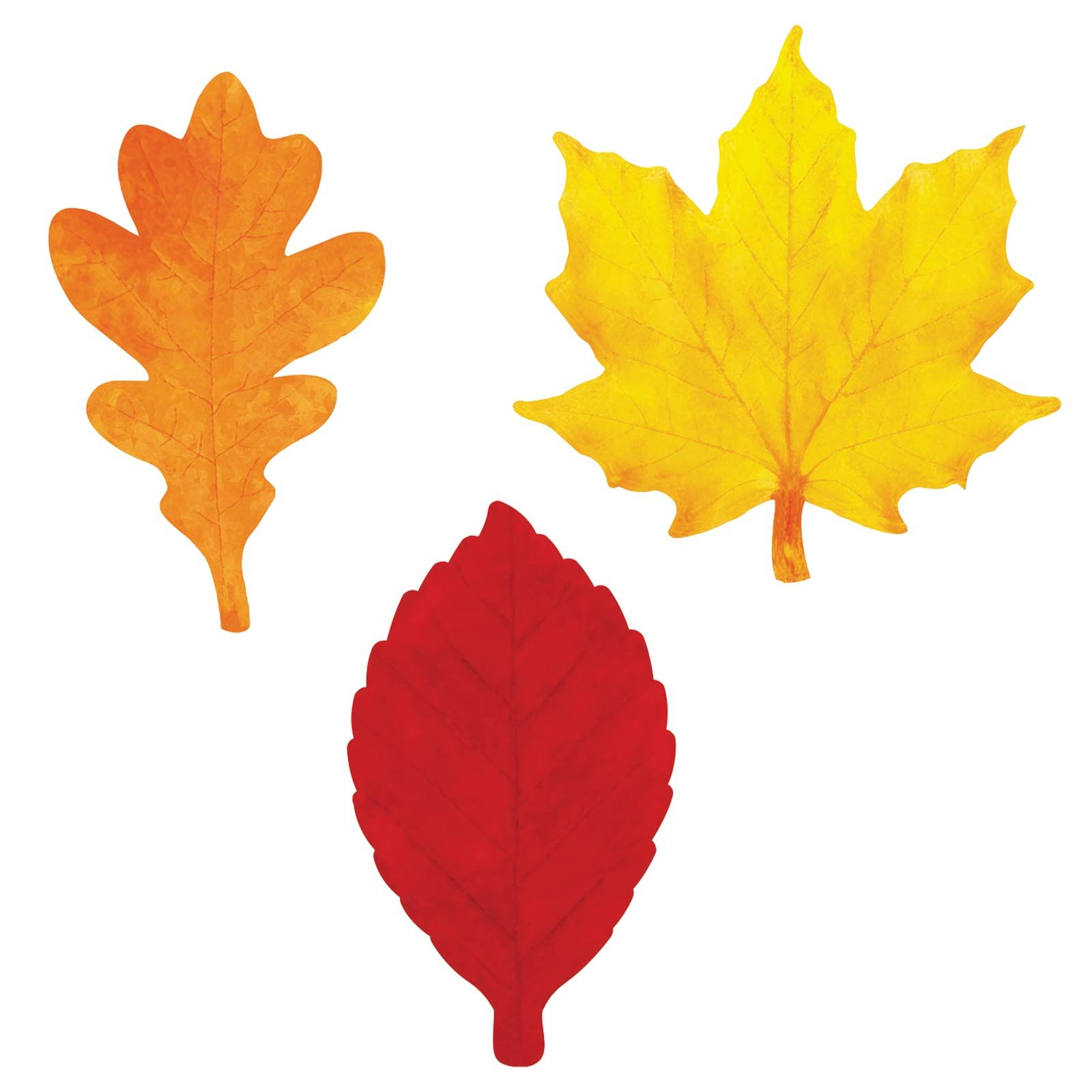Color Fall Leaves Template Clip Art Library