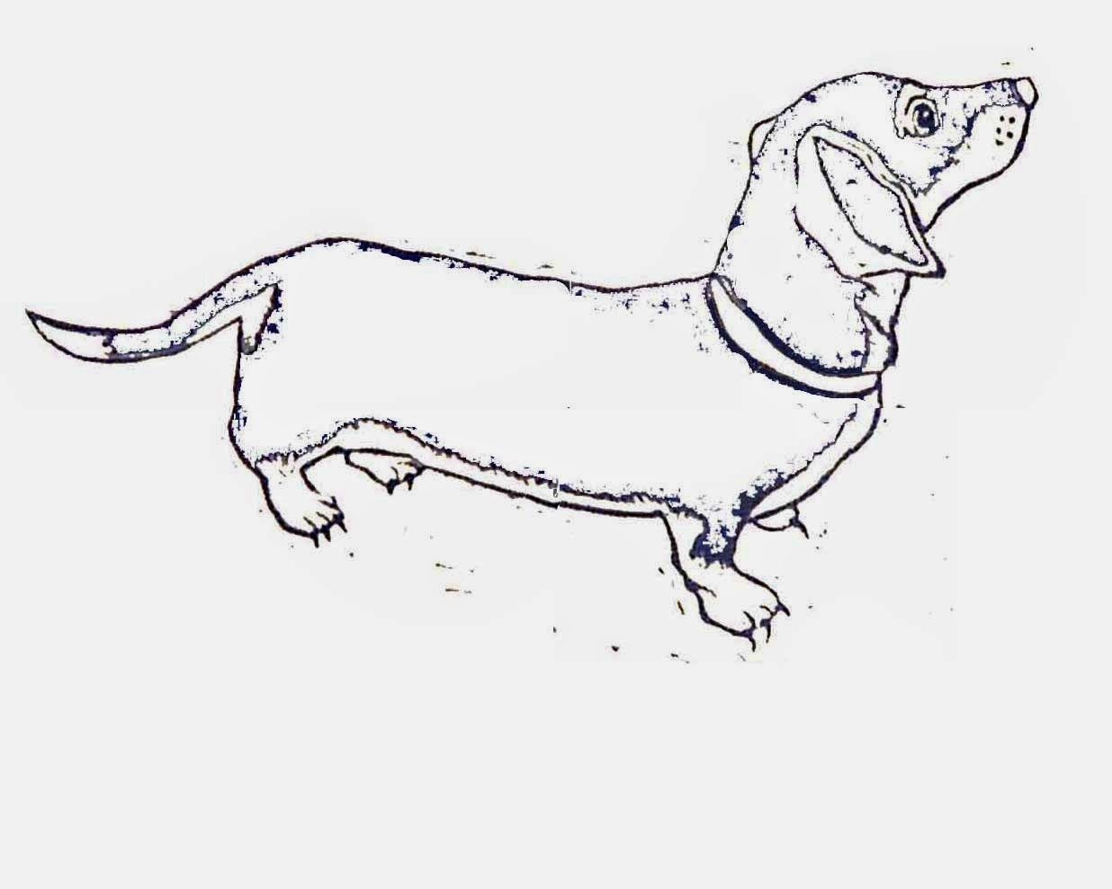 Free Dachshund Outline Cliparts Download Free Clip Art