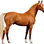 Free White Horse Png Download Free Clip Art Free Clip Art On Clipart Library