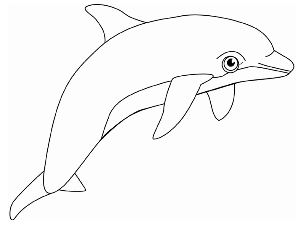 Free Fancy Dolphin Cliparts Download Free Clip Art Free Clip Art On Clipart Library