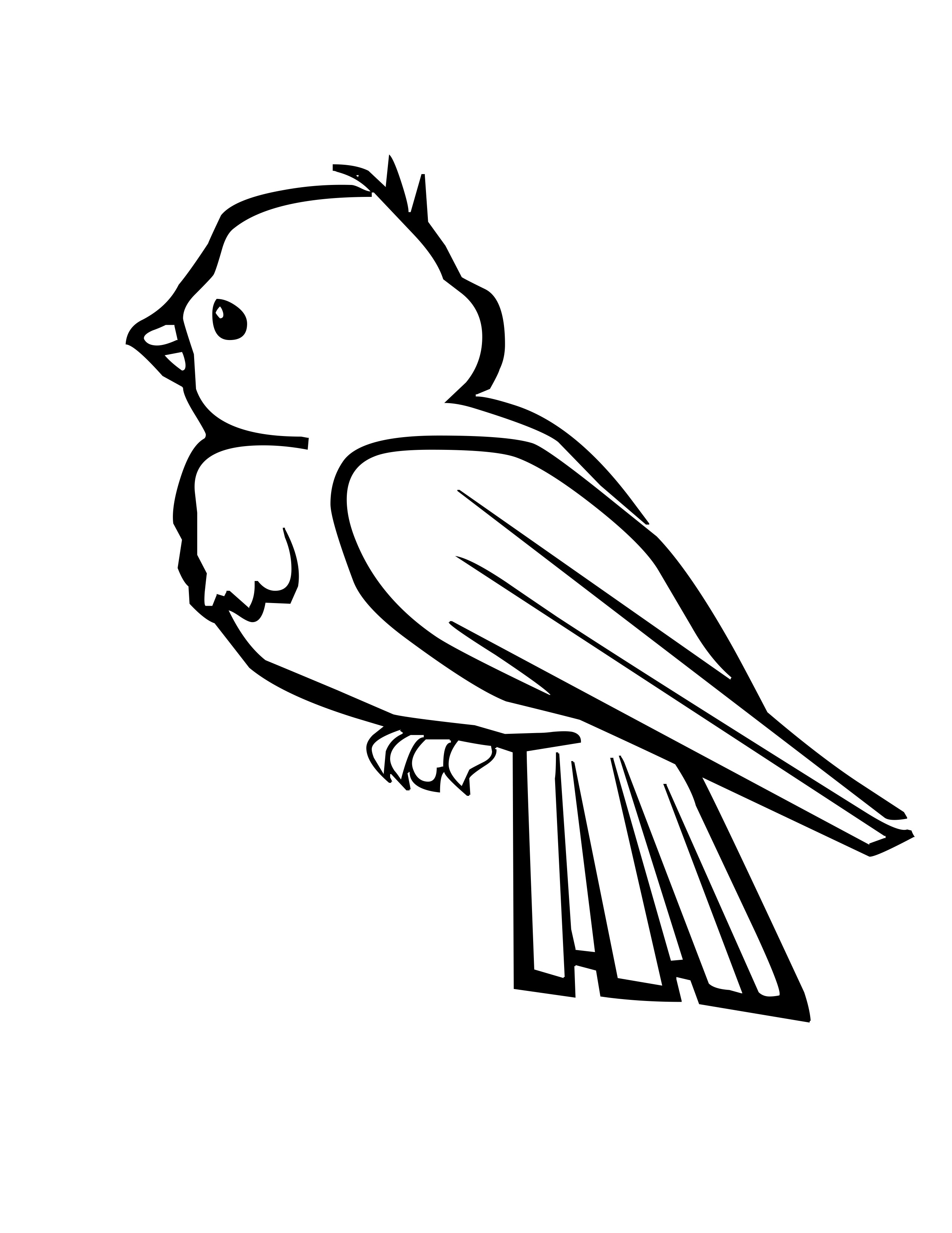 Free Angry Parakeet Cliparts Download Free Clip Art Free