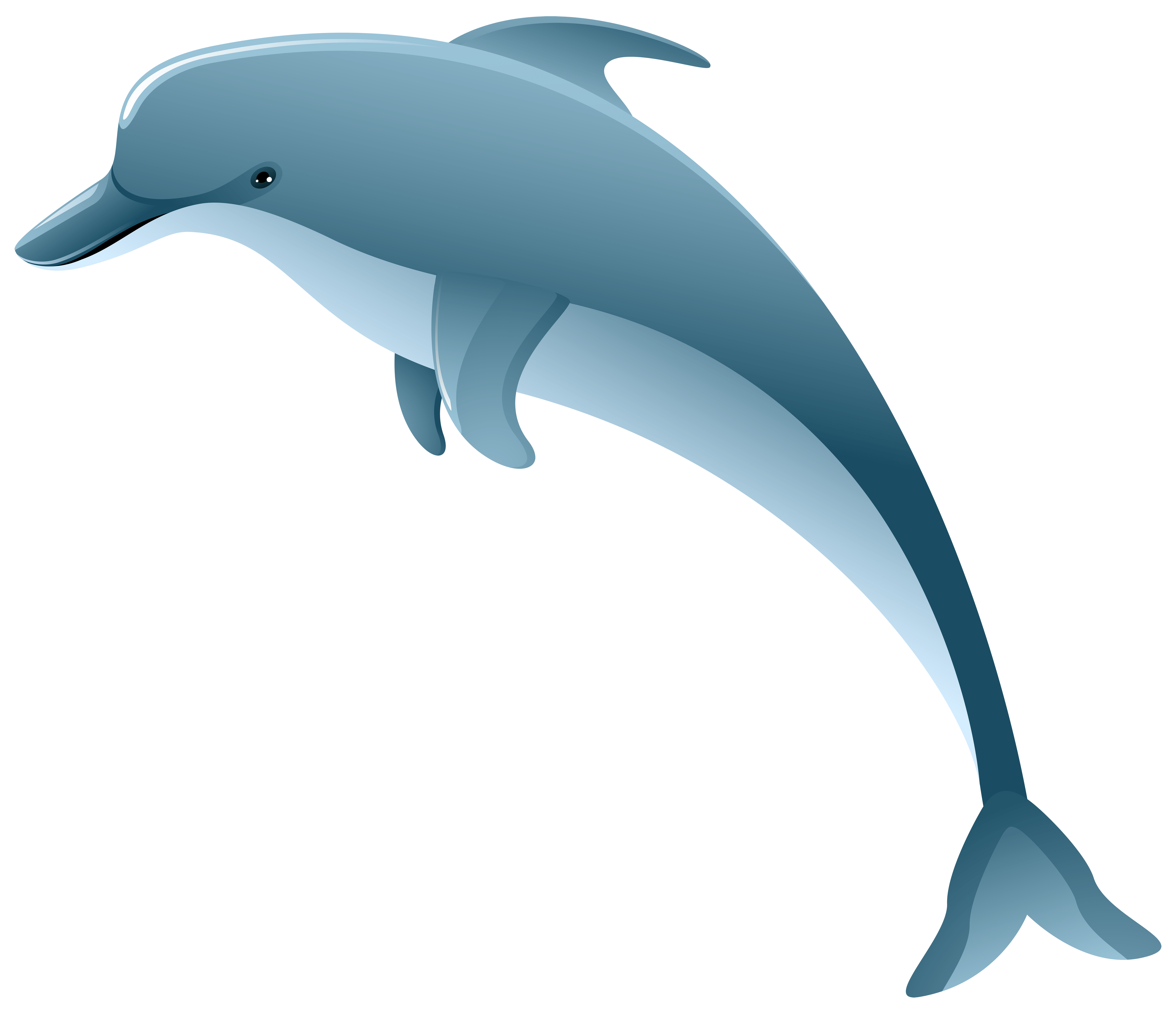 Free Picture Of Ocean Animals Download Free Clip Art