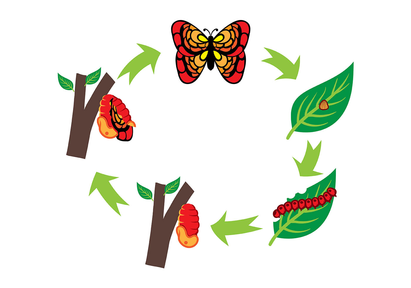 Library Of Caterpillar And Butterfly Clipart Royalty Free